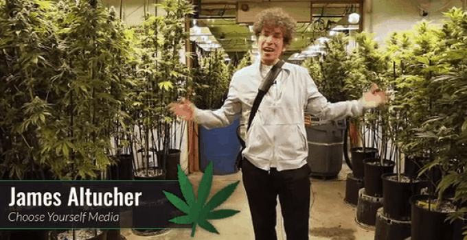 Weed Tirement by James Altucher